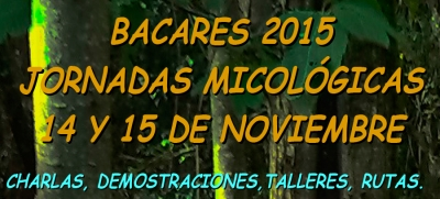 Jornadas Micológicas Bacáres 2015